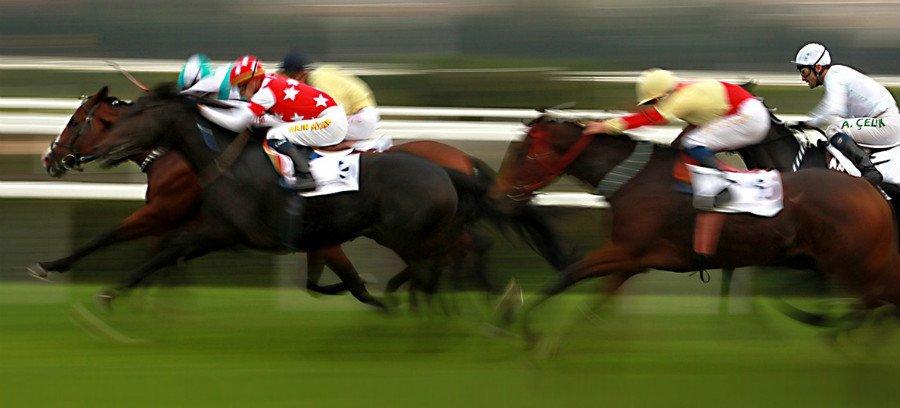 Betting på hästar